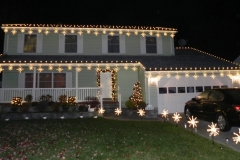 white christmas lights