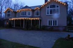 gold holiday lights